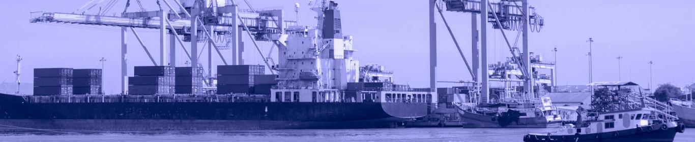 Karaikal Port Pvt. Ltd.'s Success Story with Vaultastic